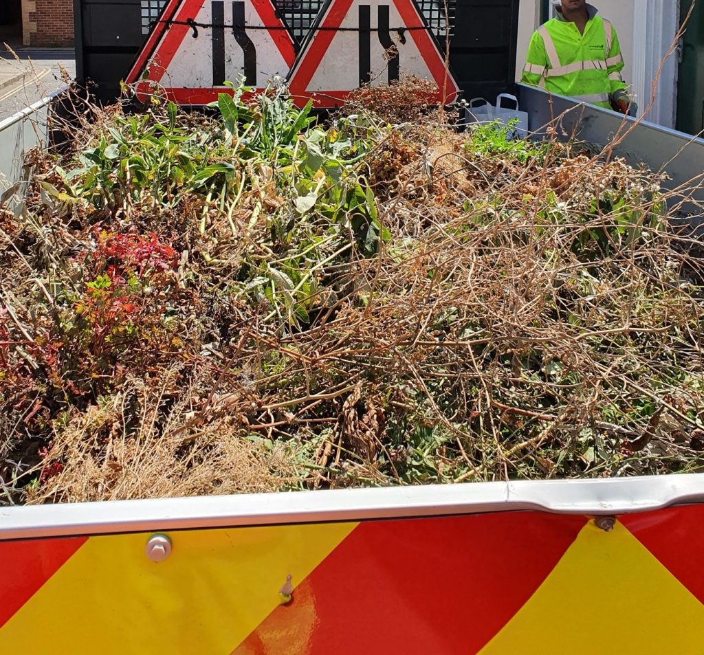 weeds removed from the town centre