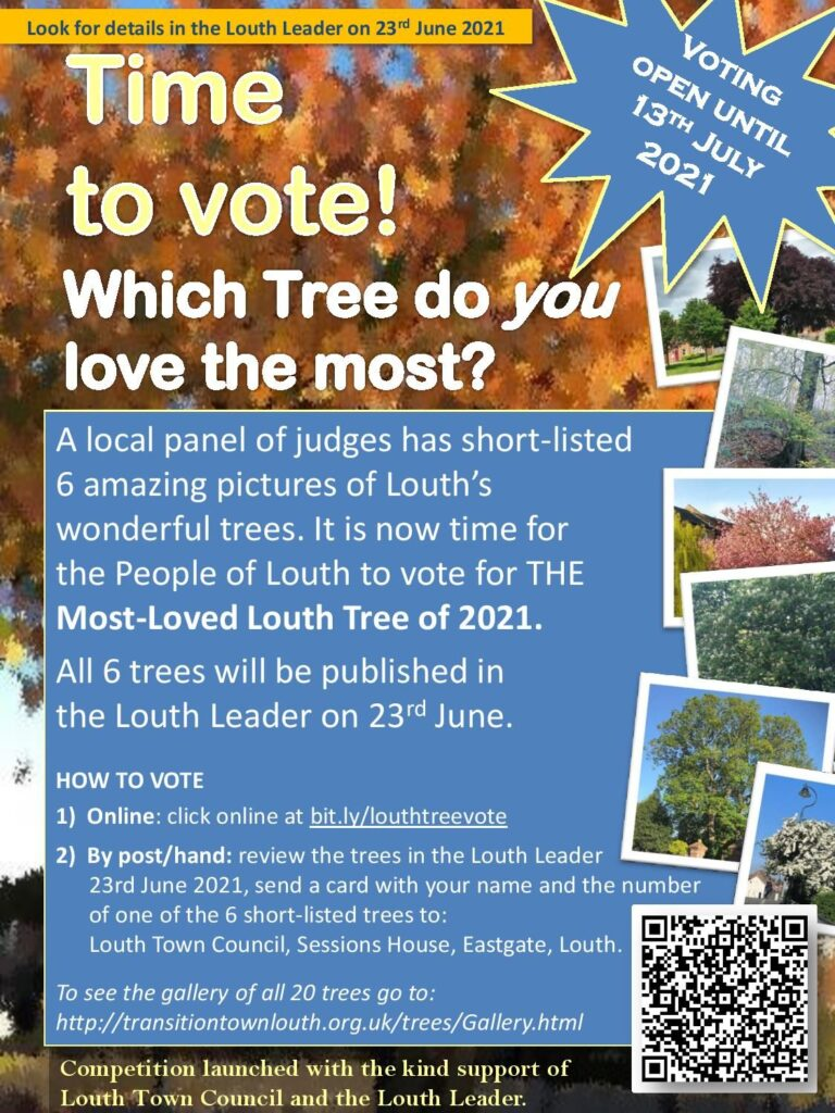 Most loved tree time to vote